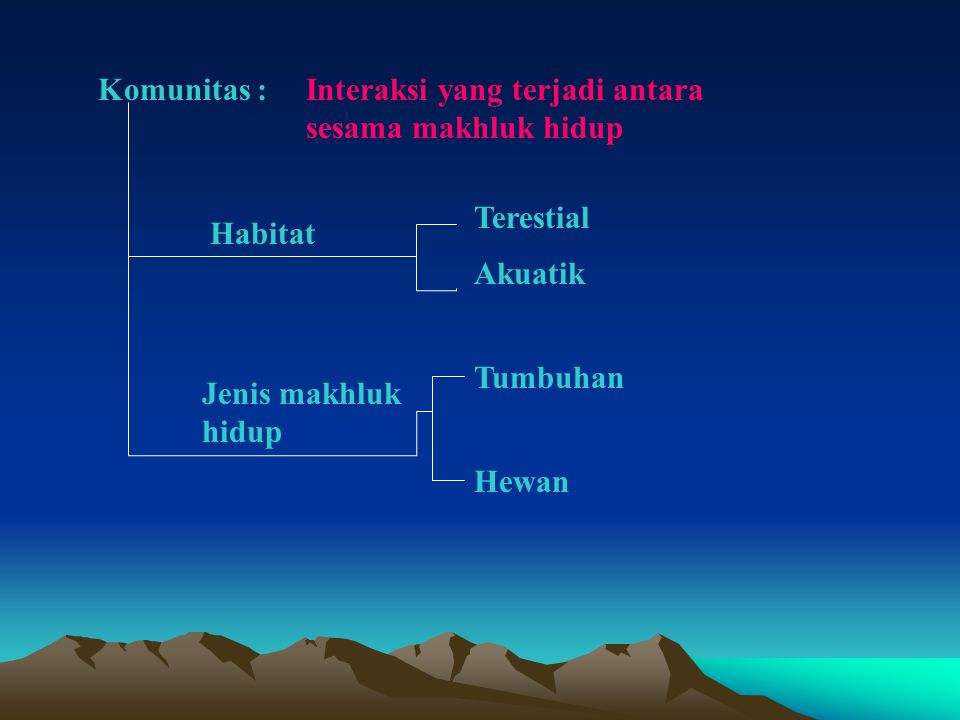 Komunitas : Interaksi yang terjadi antara sesama makhluk hidup. Terestial. Habitat. Akuatik. Tumbuhan.