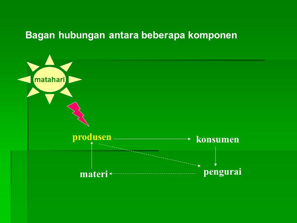 Bagan hubungan antara beberapa komponen