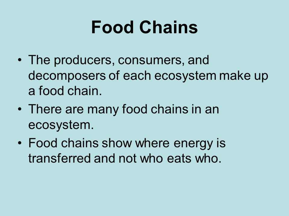 Food Chains The producers, consumers, and decomposers of each ecosystem make up a food chain. There are many food chains in an ecosystem.