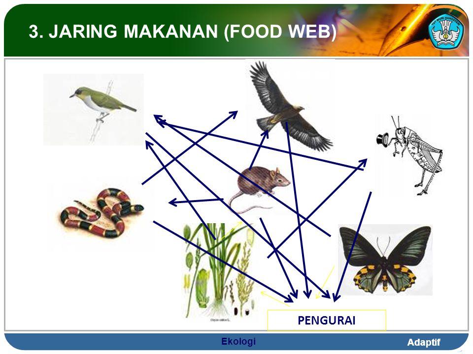 3. JARING MAKANAN (FOOD WEB)