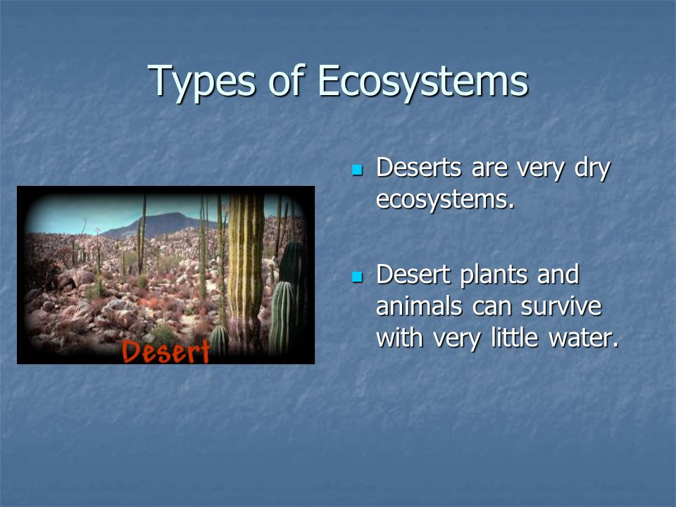Types of Ecosystems Deserts are very dry ecosystems.