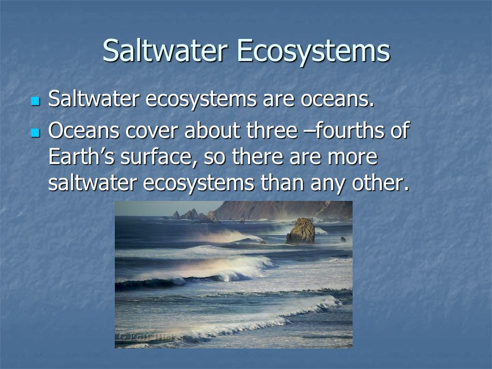 Saltwater Ecosystems Saltwater ecosystems are oceans.