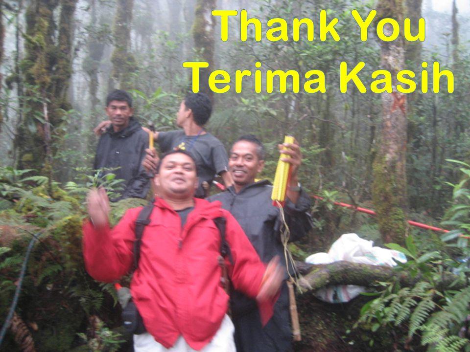Thank You Terima Kasih