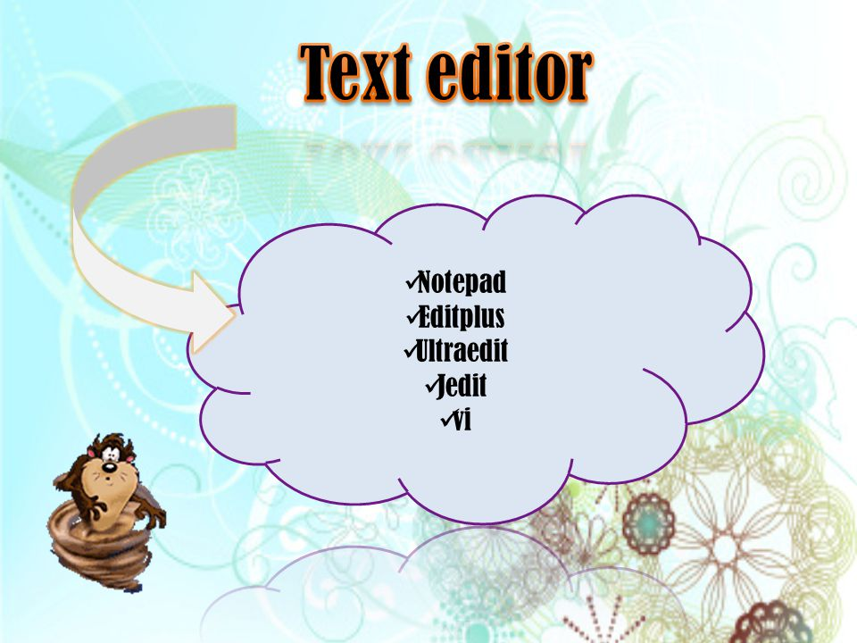 Text editor Notepad Editplus Ultraedit Jedit vi