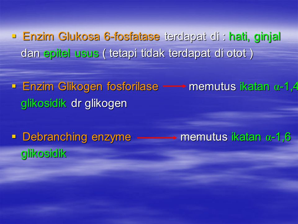 Enzim Glukosa 6-fosfatase terdapat di : hati, ginjal