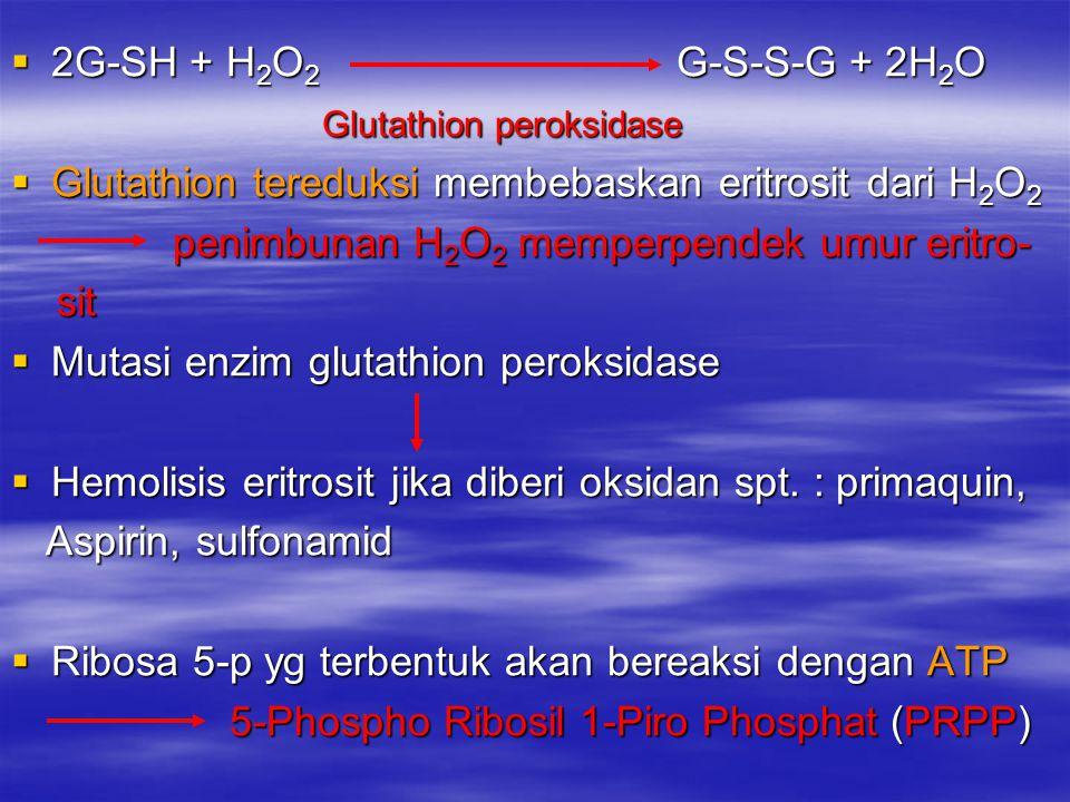 2G-SH + H2O2 G-S-S-G + 2H2O Glutathion peroksidase. Glutathion tereduksi membebaskan eritrosit dari H2O2.