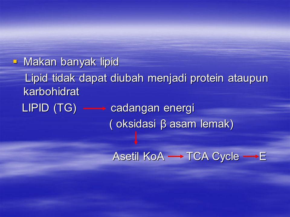 Makan banyak lipid Lipid tidak dapat diubah menjadi protein ataupun karbohidrat. LIPID (TG) cadangan energi.