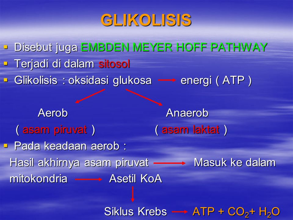 GLIKOLISIS Disebut juga EMBDEN MEYER HOFF PATHWAY