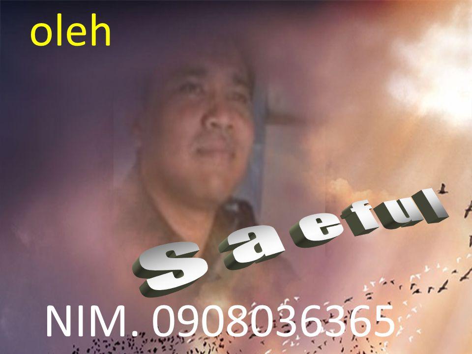 oleh s a e f u l NIM. 0908036365