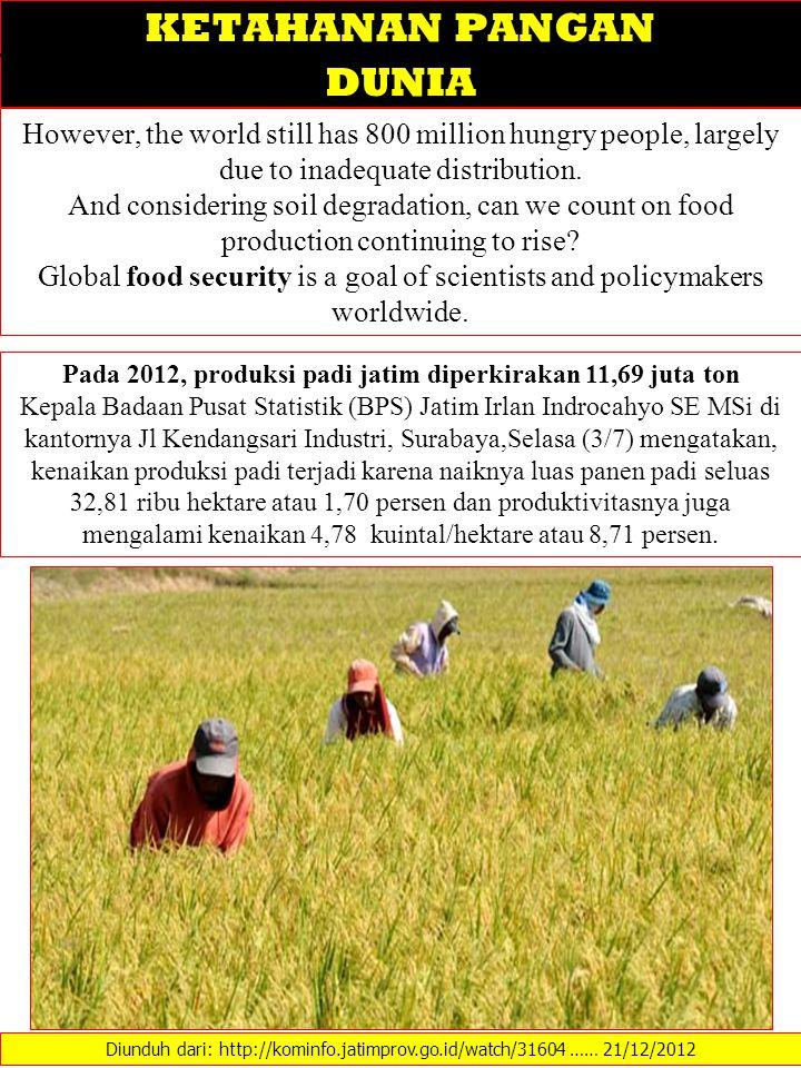 Pada 2012, produksi padi jatim diperkirakan 11,69 juta ton