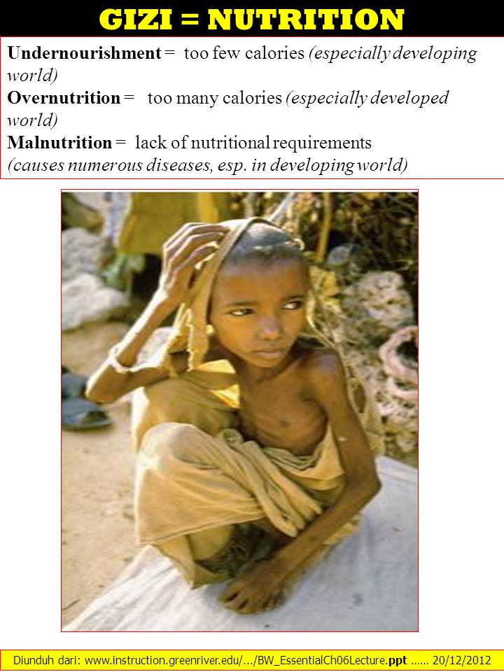 GIZI = NUTRITION Undernourishment = too few calories (especially developing world) Overnutrition = too many calories (especially developed world)