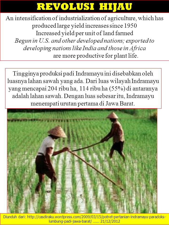 REVOLUSI HIJAU An intensification of industrialization of agriculture, which has produced large yield increases since 1950.