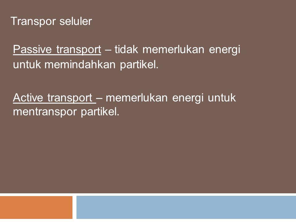 Transpor seluler Passive transport – tidak memerlukan energi untuk memindahkan partikel.