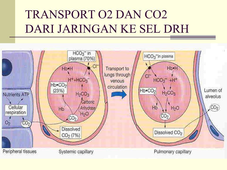 TRANSPORT O2 DAN CO2 DARI JARINGAN KE SEL DRH