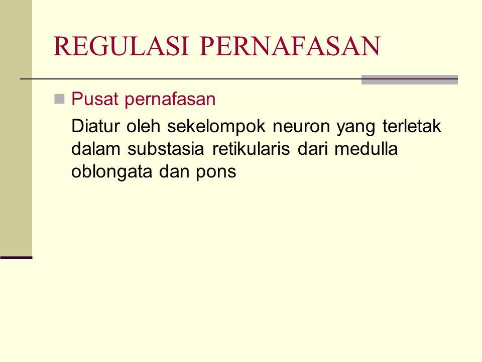REGULASI PERNAFASAN Pusat pernafasan