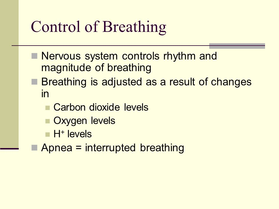 Control of Breathing Nervous system controls rhythm and magnitude of breathing. Breathing is adjusted as a result of changes in.