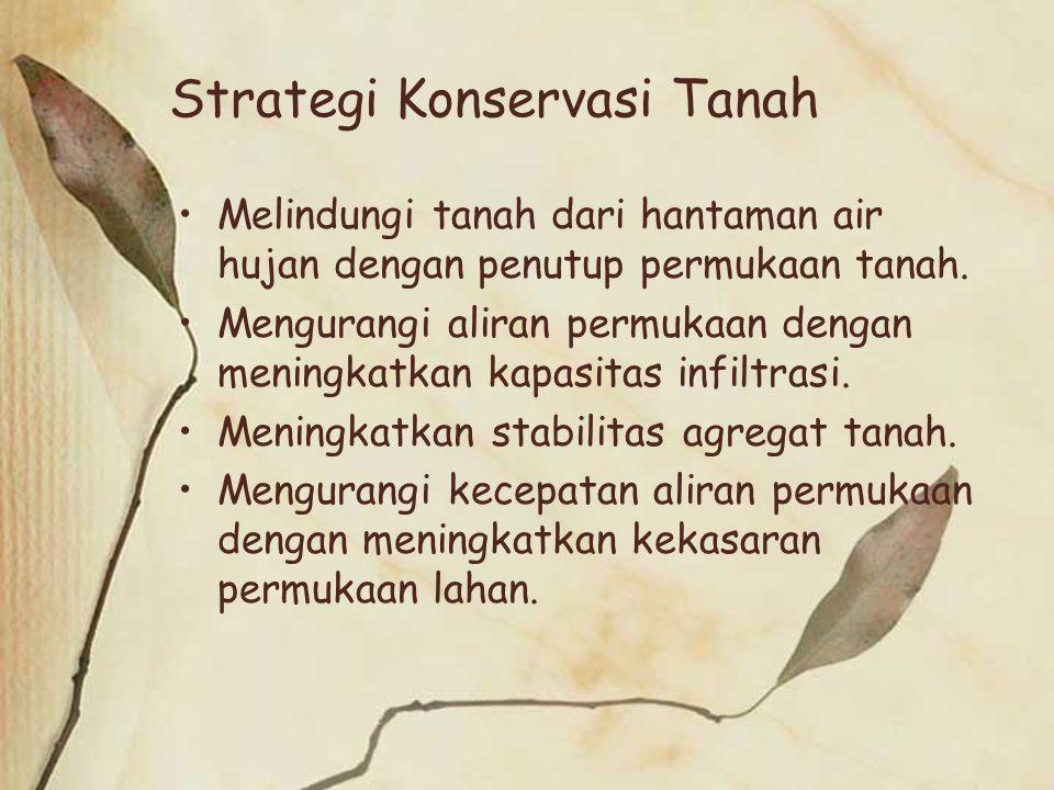 Strategi Konservasi Tanah