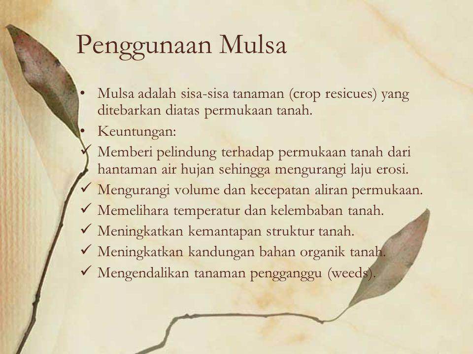 Penggunaan Mulsa Mulsa adalah sisa-sisa tanaman (crop resicues) yang ditebarkan diatas permukaan tanah.