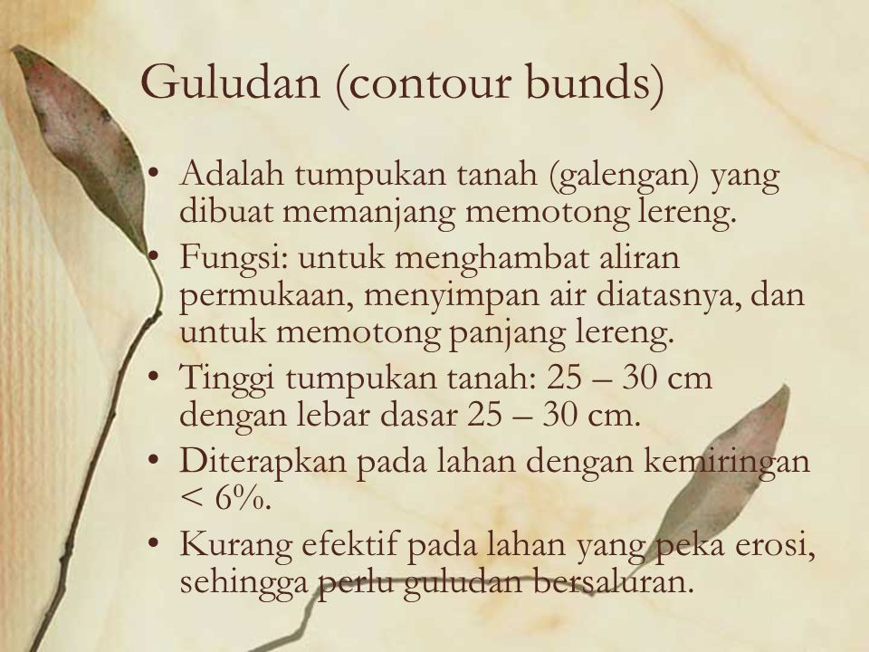 Guludan (contour bunds)