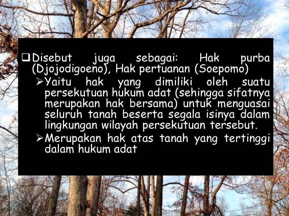 Disebut juga sebagai: Hak purba (Djojodigoeno), Hak pertuanan (Soepomo)