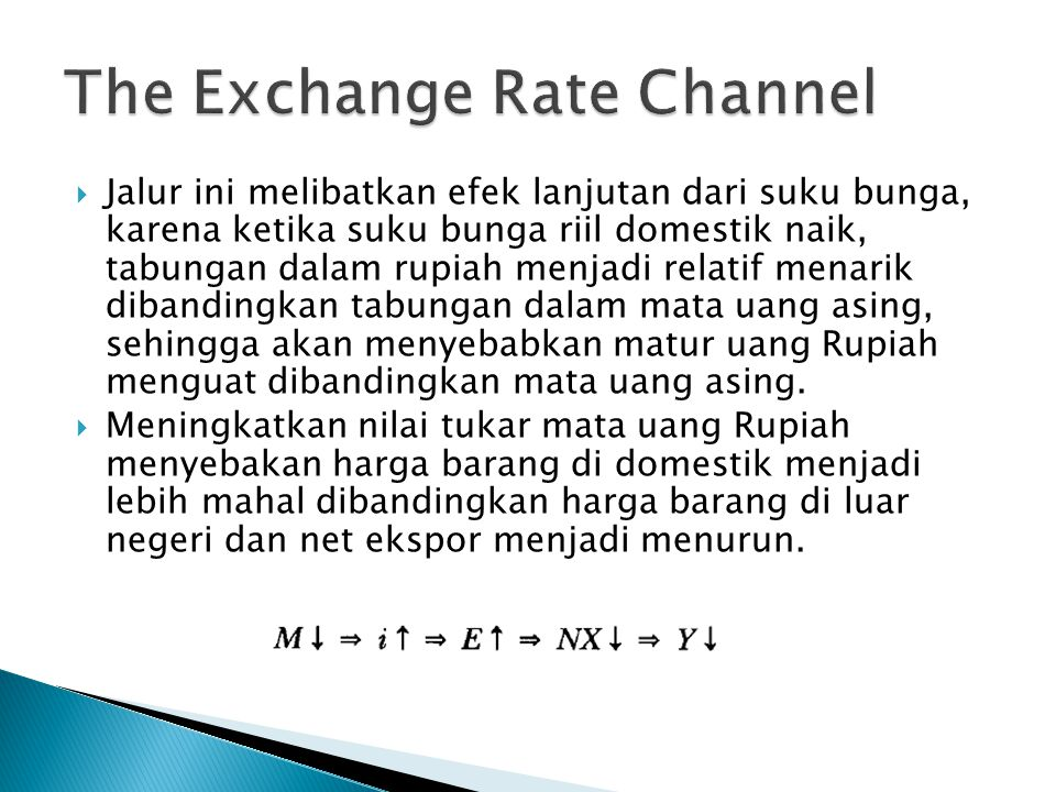 The Exchange Rate Channel