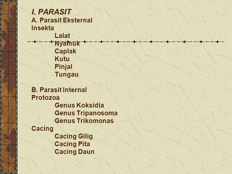 I. PARASIT A. Parasit Eksternal Insekta. Lalat. Nyamuk. Caplak. Kutu