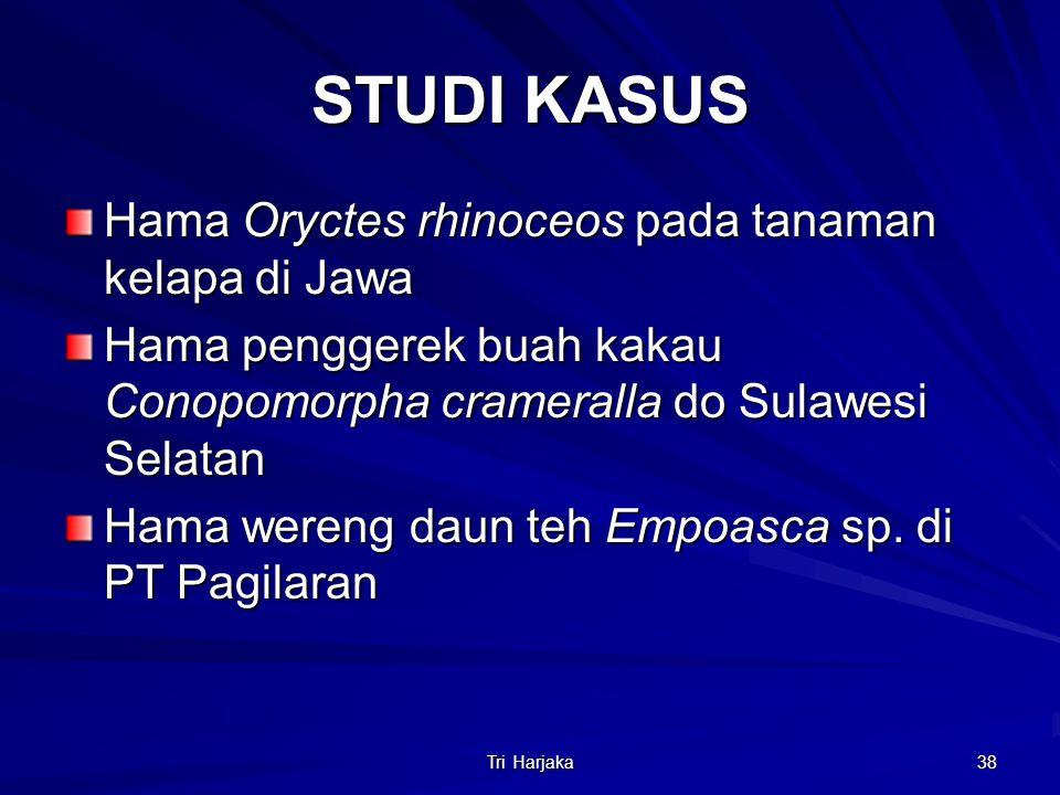 STUDI KASUS Hama Oryctes rhinoceos pada tanaman kelapa di Jawa