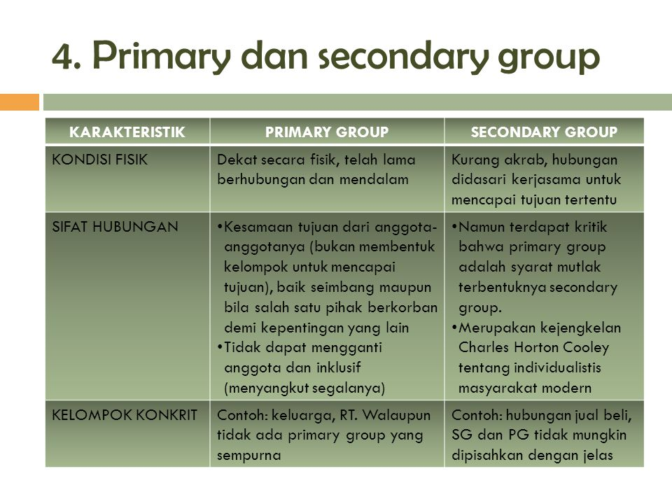 4. Primary dan secondary group