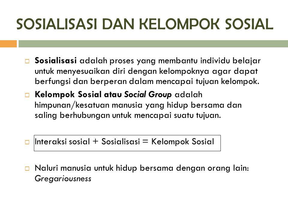 SOSIALISASI DAN KELOMPOK SOSIAL