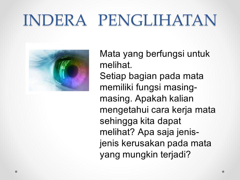 INDERA PENGLIHATAN Mata yang berfungsi untuk melihat.
