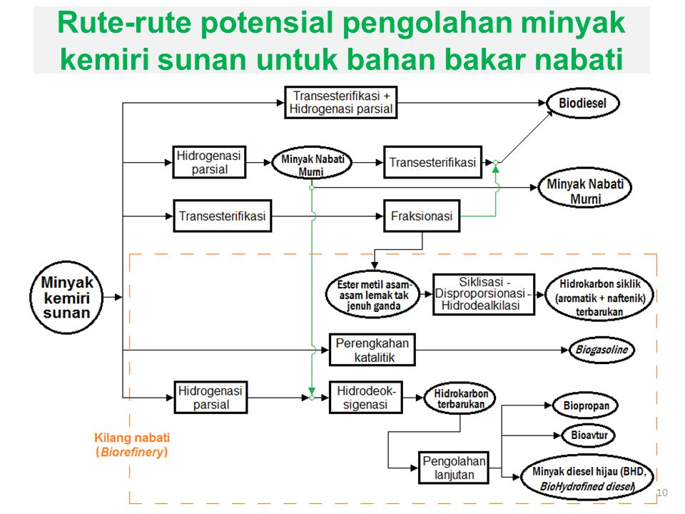 Rute-rute potensial pengolahan minyak kemiri sunan untuk bahan bakar nabati