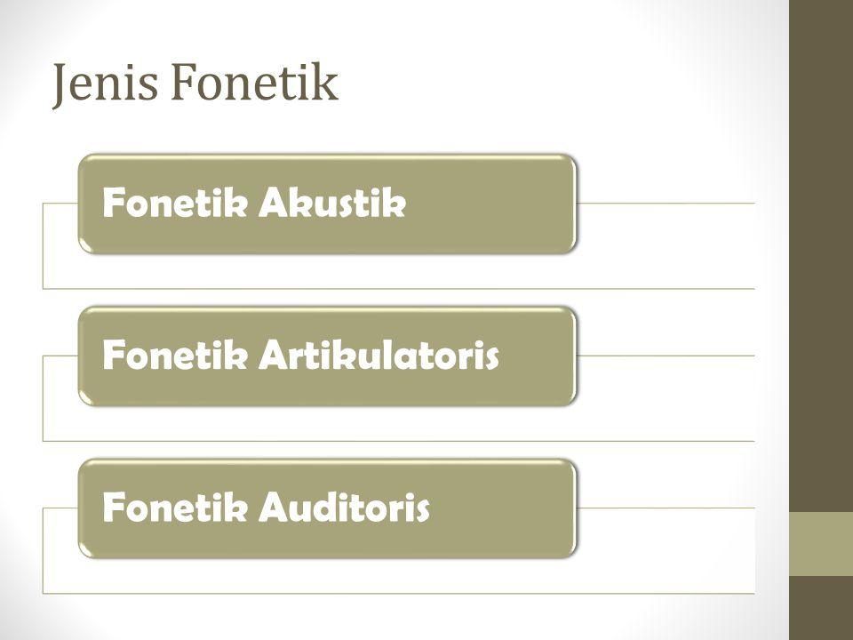 Jenis Fonetik Fonetik Akustik Fonetik Artikulatoris Fonetik Auditoris