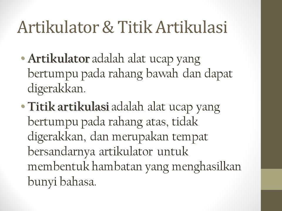 Artikulator & Titik Artikulasi