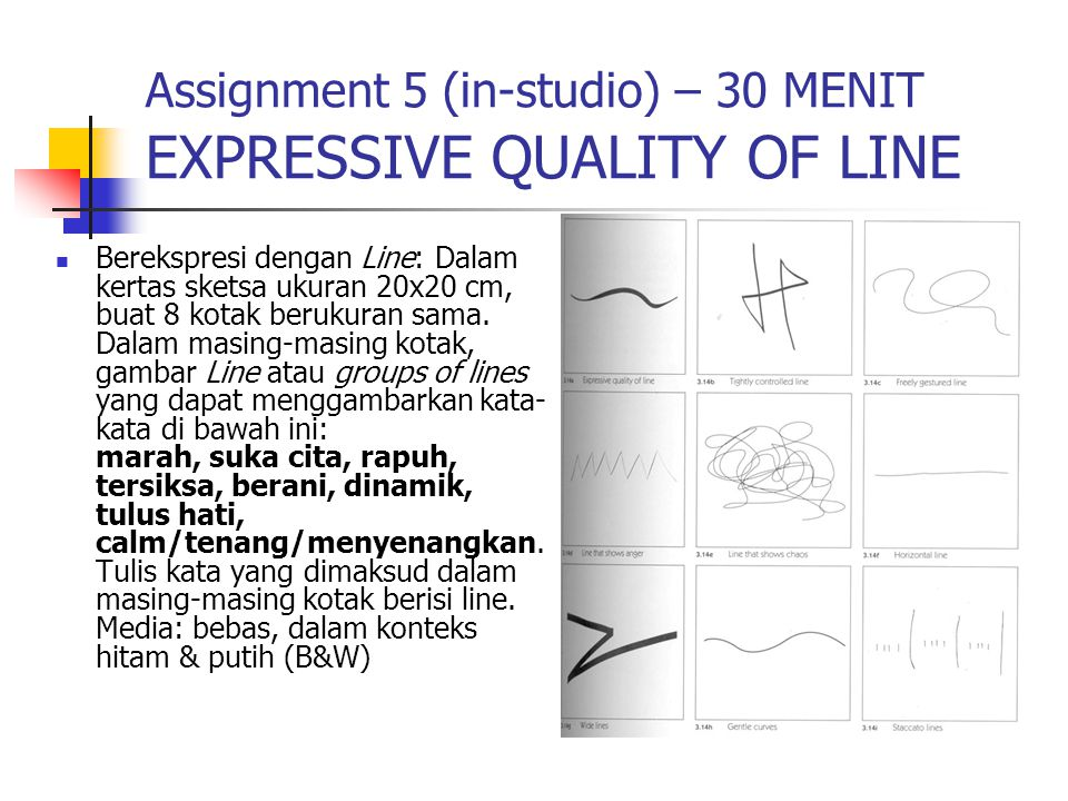 Assignment 5 (in-studio) – 30 MENIT EXPRESSIVE QUALITY OF LINE