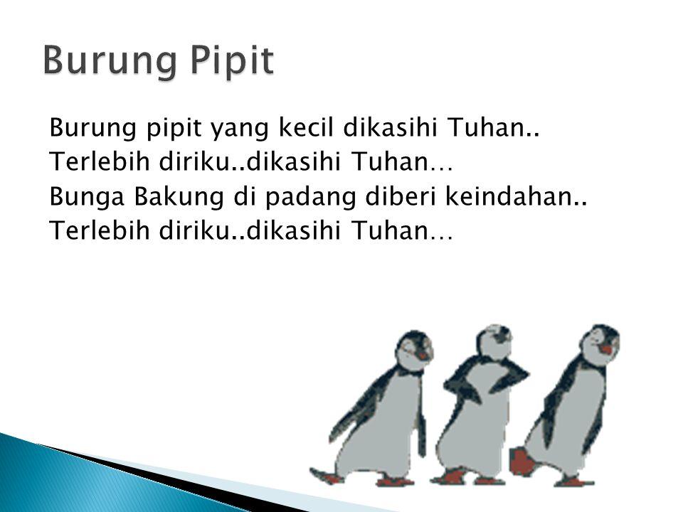 Burung Pipit Burung pipit yang kecil dikasihi Tuhan..