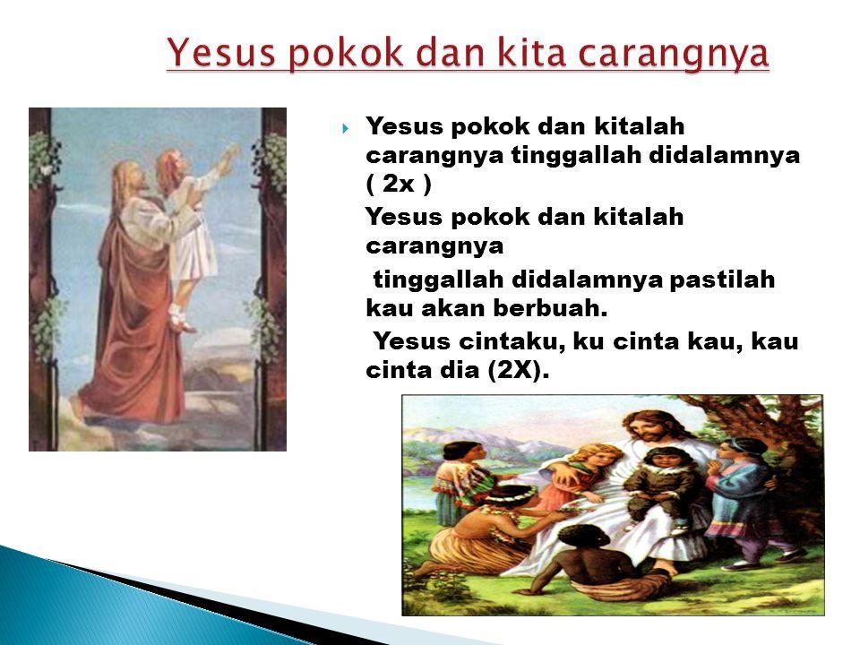 Yesus pokok dan kita carangnya