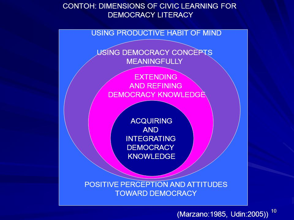 CONTOH: DIMENSIONS OF CIVIC LEARNING FOR DEMOCRACY LITERACY
