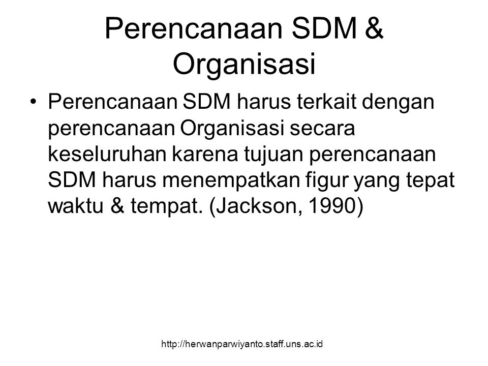 Perencanaan SDM & Organisasi