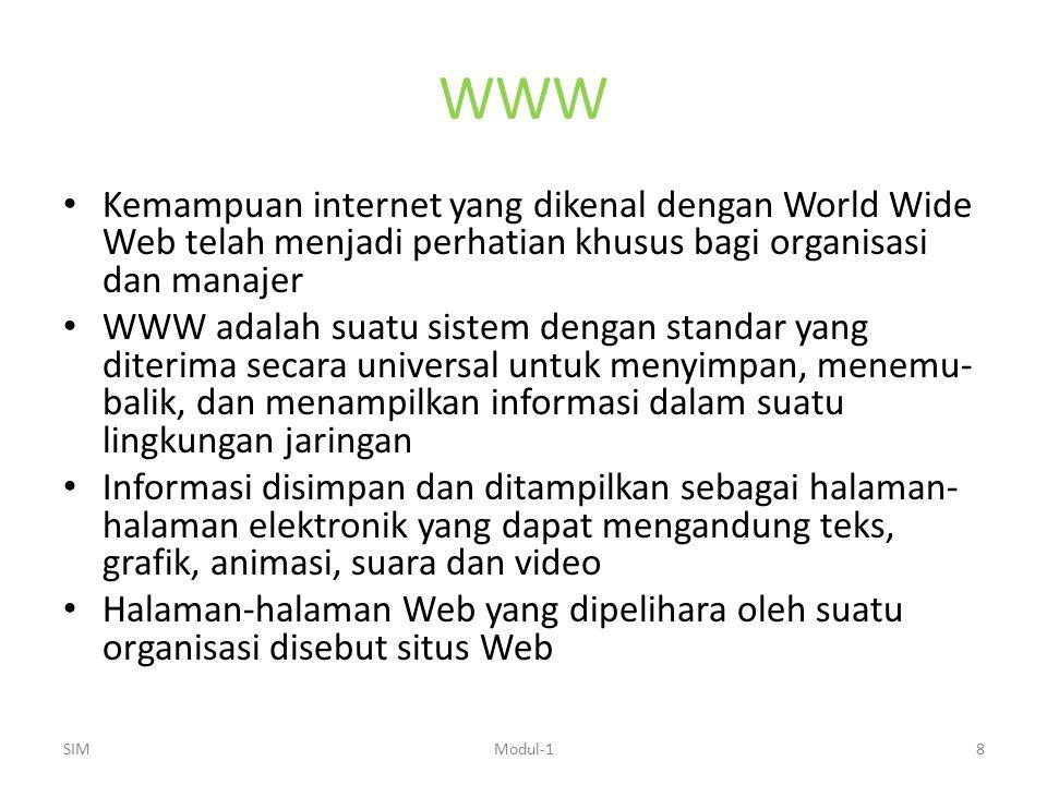 WWW Kemampuan internet yang dikenal dengan World Wide Web telah menjadi perhatian khusus bagi organisasi dan manajer.