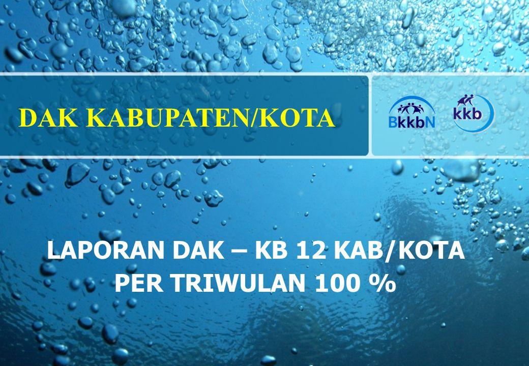 LAPORAN DAK – KB 12 KAB/KOTA PER TRIWULAN 100 %