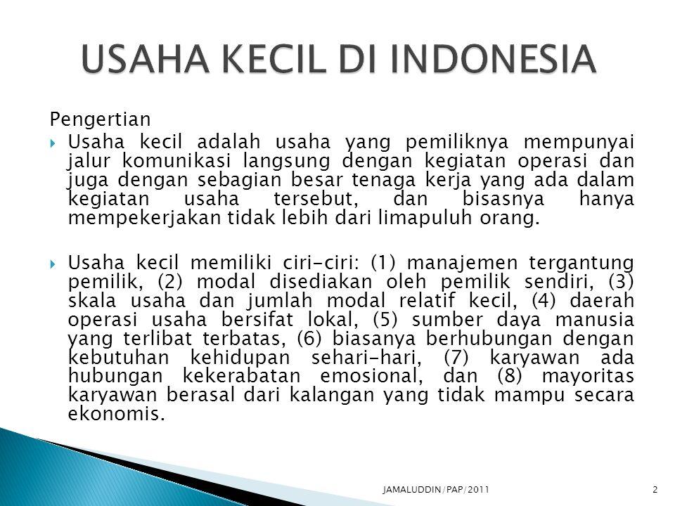 USAHA KECIL DI INDONESIA