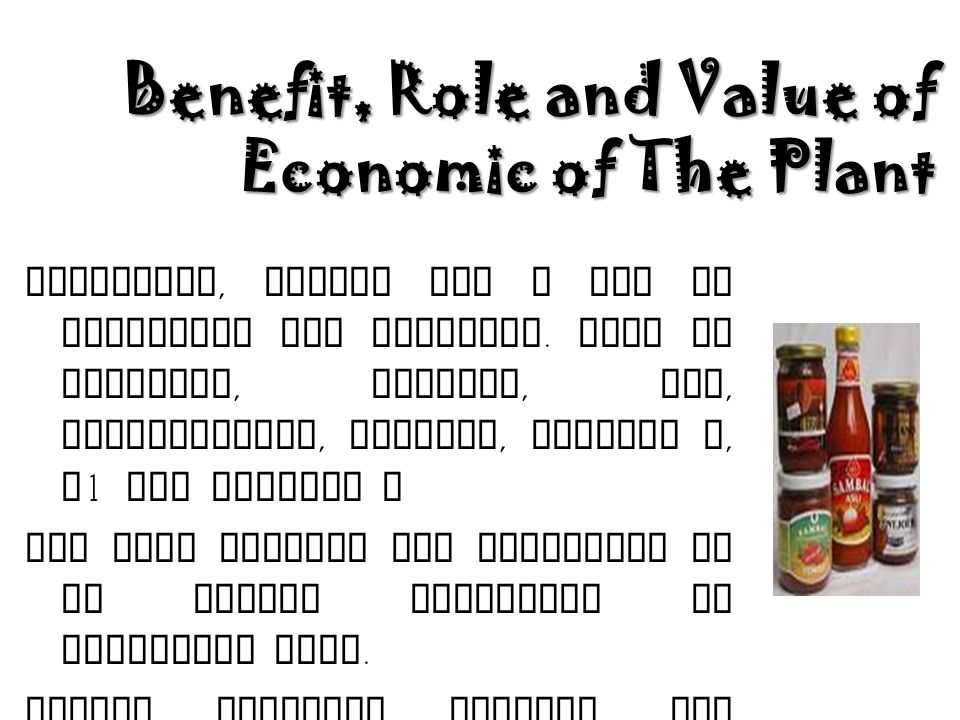 Benefit, Role and Value of Economic of The Plant
