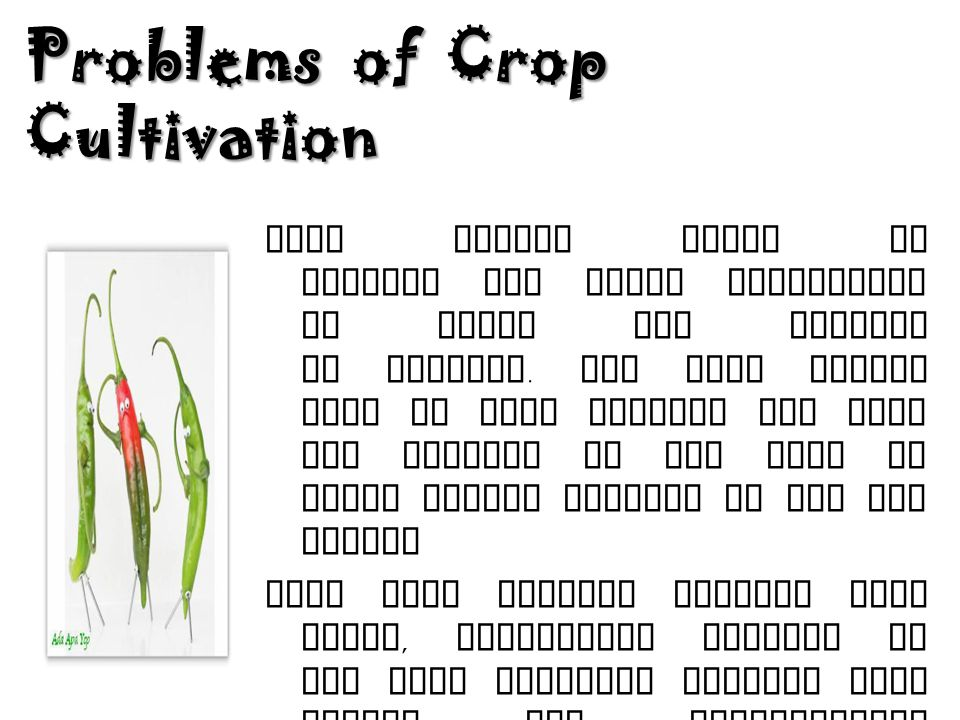 Problems of Crop Cultivation