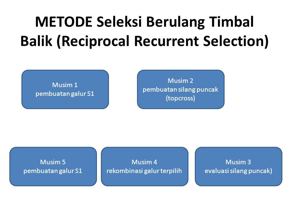 METODE Seleksi Berulang Timbal Balik (Reciprocal Recurrent Selection)