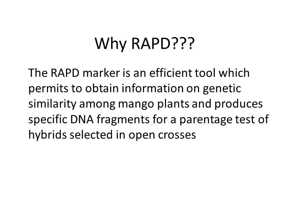 Why RAPD