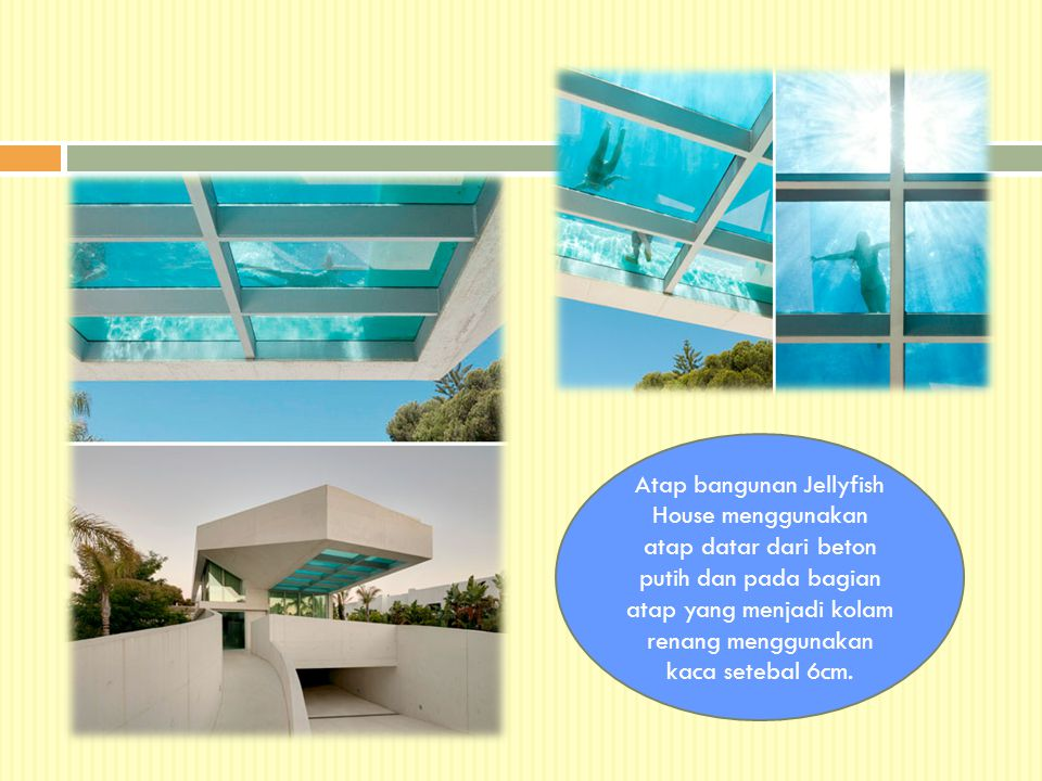 Atap bangunan Jellyfish House menggunakan atap datar dari beton putih dan pada bagian atap yang menjadi kolam renang menggunakan kaca setebal 6cm.