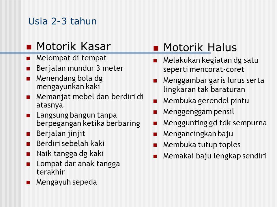 Motorik Kasar Motorik Halus Usia 2-3 tahun Melompat di tempat