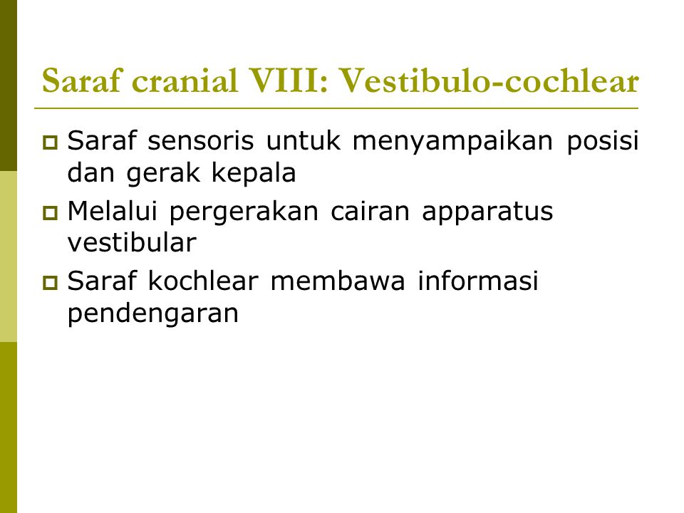 Saraf cranial VIII: Vestibulo-cochlear