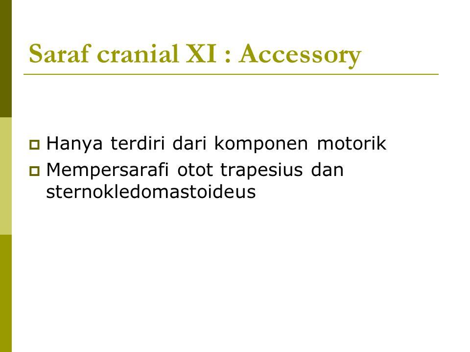 Saraf cranial XI : Accessory