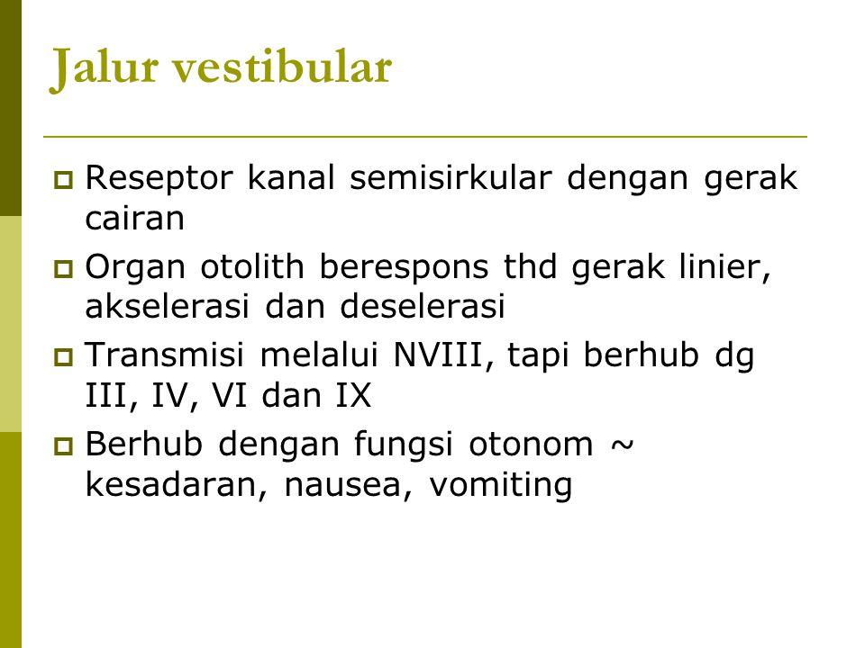 Jalur vestibular Reseptor kanal semisirkular dengan gerak cairan